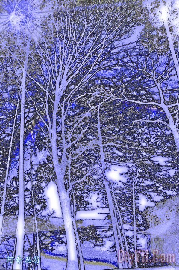 树跳舞装饰画_风景_小溪_月光_自然_图片大全_阿奇思特