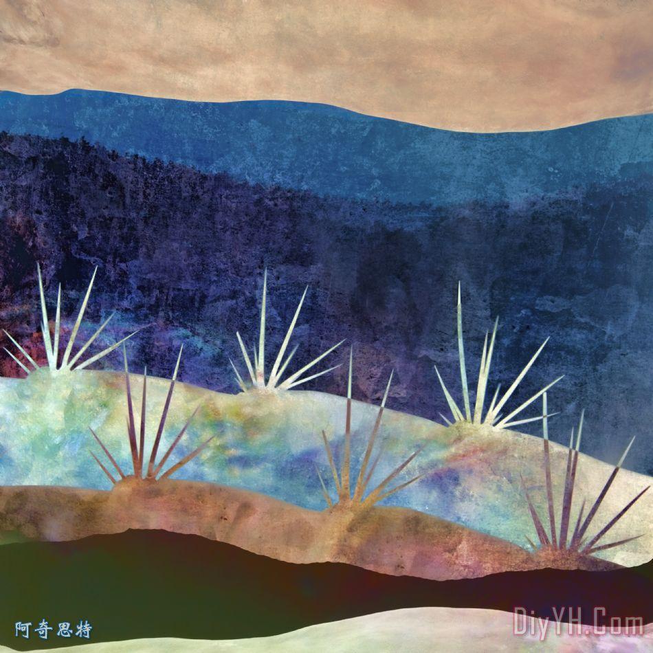 巴哈风景2号装饰画 仙人掌 墨西哥 西南 巴哈风景2号油画定制 阿奇思