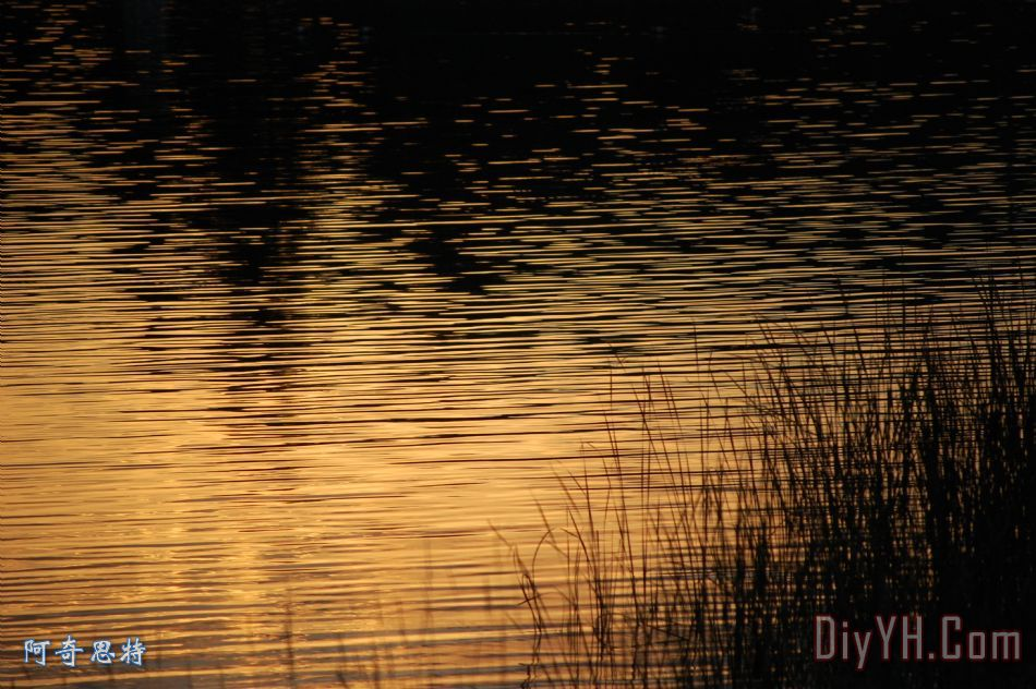 装饰画 风景 晚霞 自然 反射的日落油画定制 阿奇思特