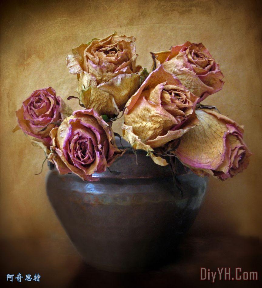 脆弱的玫瑰装饰画 花卉 静物 花瓶 玫瑰花 花朵 图片大全 阿奇思特